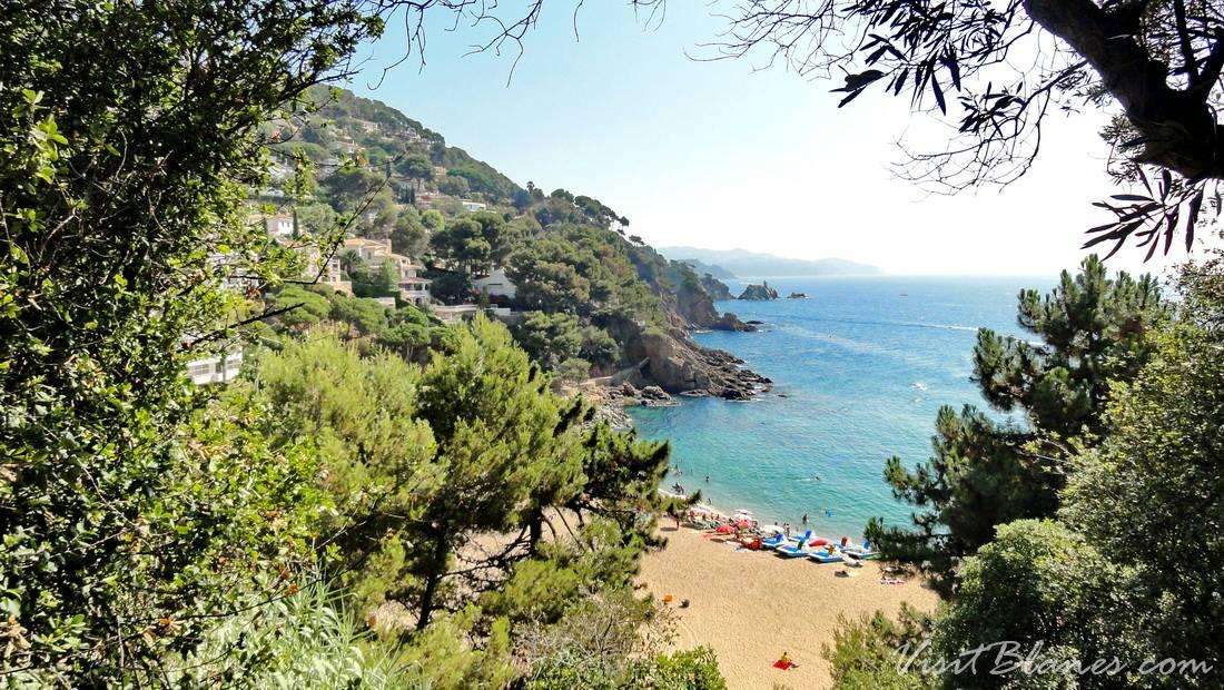 Sant Francesc beach panorama