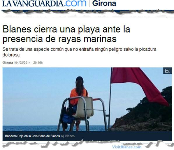 Red flag at Blanes beach due to stingrays